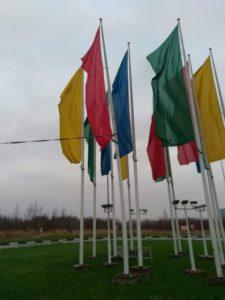 Общий вид флагов